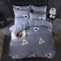 莱仕家纺 柔软舒适芦荟棉四件套床单款 梦幻空间