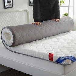 (总)迪乐妮 2019新款针织 法莱绒透气加厚床垫