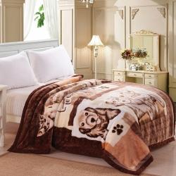 拉舍尔毛毯学生宿舍毛毯单人毯子150x200cm 一件代发
