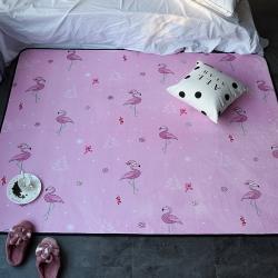 (总)悠亿嘉 ins地毯卧室客厅地垫茶几飘窗垫子可定制粉火鸟