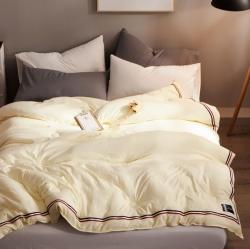 日式优质斜纹水洗棉被子被芯春秋被冬季加厚保暖被子棉被三色织带
