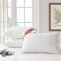 兴丝露枕芯 全棉绗缝立体枕 舒适枕 枕头48x74cm