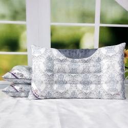兴丝露枕芯  特价磁疗护颈枕灰蓝 保健枕 枕头42x65cm