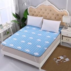 (总)火星时代 四季款可水洗棉床垫床褥子磨毛席梦思床护垫子
