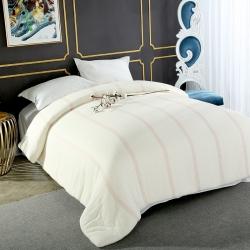 4斤 贝拉萌新疆原产细长绒棉花被芯棉胎彩网学生被芯春秋冬被芯