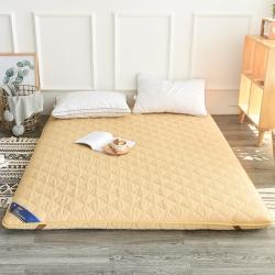 米帛床垫  磨毛纯色加厚榻榻米床垫
