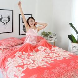 加厚双面绒云貂绒毛毯 床单 法莱绒毯 珊瑚绒毛毯云貂绒枕芯套