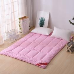 水洗棉素色软床垫可折叠学生宿舍用品榻榻米垫子4斤6斤8斤
