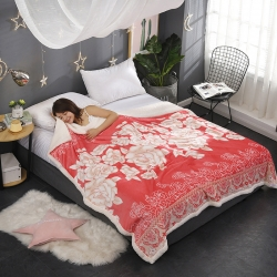 法莱绒毯子加厚冬季复合羊羔绒盖毯儿童法兰绒毛毯珊瑚绒毯子