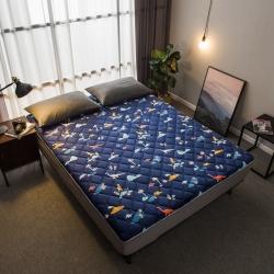 【垫之坊】法莱绒印花 秋冬保暖床褥地垫席梦思保护垫0.9