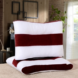 立高保健枕