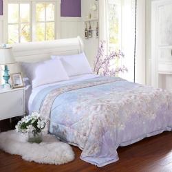 寝香居家纺 冰丝凉爽夏被芯子 花紫