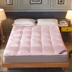 (总)帛奴家纺 羽丝绒软床垫