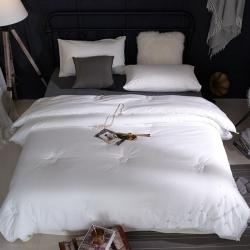 嘉柏家纺 高品质60长绒棉磨毛绣花蕾丝冬被1