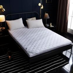 舒雅床垫 可折叠水洗棉防螨抗菌床垫 白色