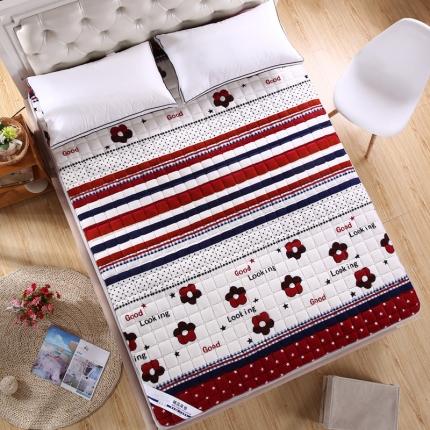 敢为床垫 可水洗绗绣毛巾绒夹棉床垫床护垫 薄款再见时光