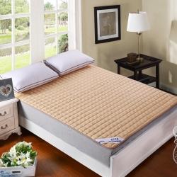 敢为床垫 纯色可水洗夹棉绗绣床垫床护垫