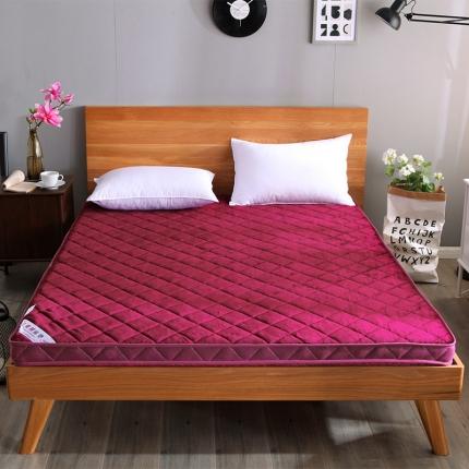 (总)迪乐妮垫业 法莱绒透气床垫