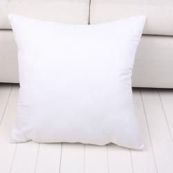 无纺布抱枕芯靠枕芯404550可定做