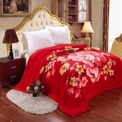 尚品凤凰 3.0公斤拉舍尔毛毯 1031大红
