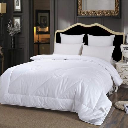 (总)绵屋家居 保暖舒适全棉暖冬被 全棉冬被