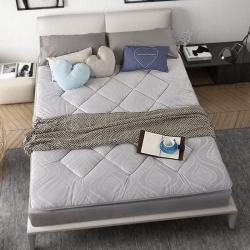 敢為床墊 加厚耐壓水晶超柔絨壓花防靜電床墊