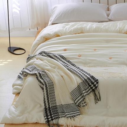 一岚家居 60s天丝被芯加厚冬被双人保暖被 天丝仿鹅绒暖被