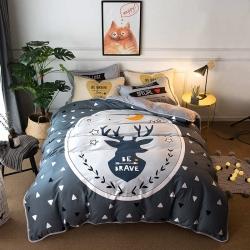 (总1)宜代光年棉+法莱绒四件套保暖套件多规格尺寸床单款