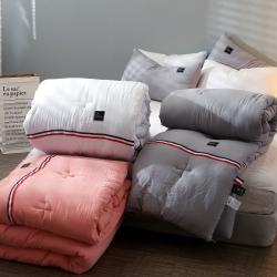TB织带风 水洗棉冬被加厚单人床学生被褥宿舍被子双人保暖被芯