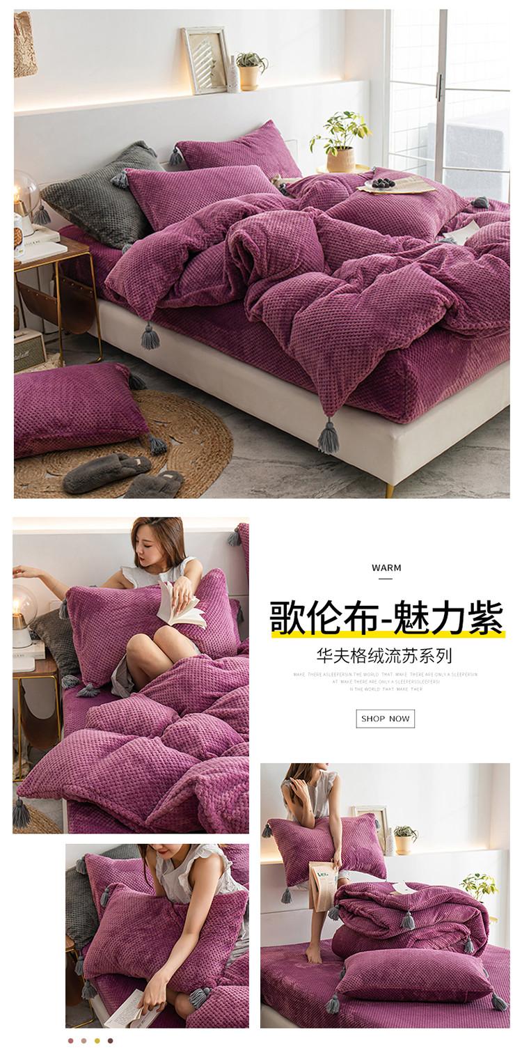 歌伦布-魅力紫.jpg