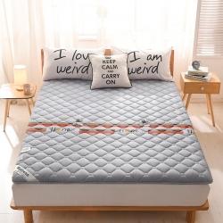(總)布盧姆床墊  英威達全棉抗菌床墊(印花)薄款5厘米