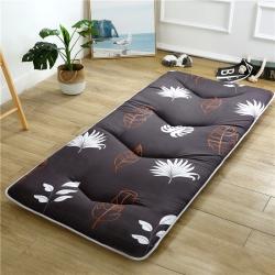 紫馨雅床垫 2019新款-加厚磨毛小床垫 羽叶风情