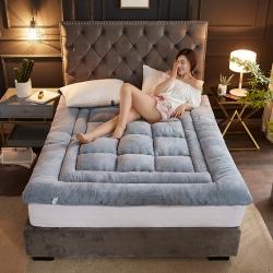 (總)微枕芯 2019新款加厚羊羔絨床墊