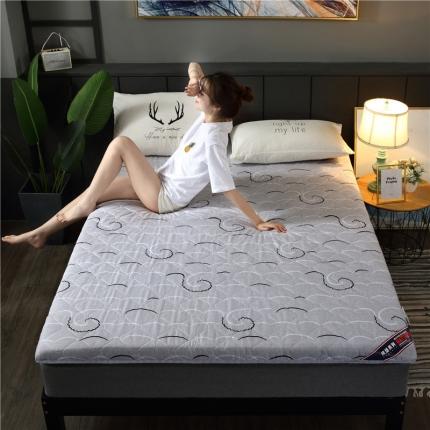 富亿莱床垫 2019亲肤磨毛厚款床垫 简单生活