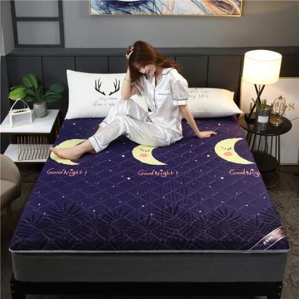 富亿莱床垫 2019亲肤磨毛厚款床垫 加厚硬质棉立体月之梦