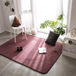 仁慧家纺 2019新款素色地毯地垫门垫茶几垫 素色豆沙红