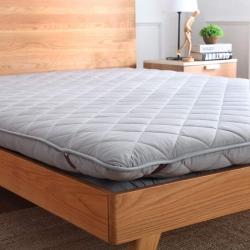 (总)迪乐妮垫业 加厚磨毛榻榻米床垫3色