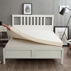 (总)迪乐妮垫业 3色可拆洗记忆棉床垫