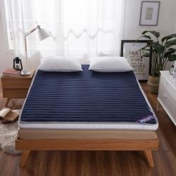 迪乐妮垫业 蓝白配 可全拆两用加厚床垫2色 蓝色
