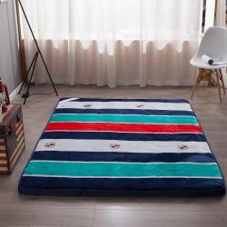 迪乐妮垫业 法莱绒印花透气立体床垫 英伦风尚