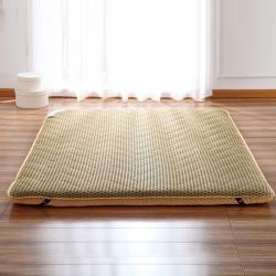 (总)迪乐妮垫业 新款超级加厚4D蜂窝榻榻米床垫