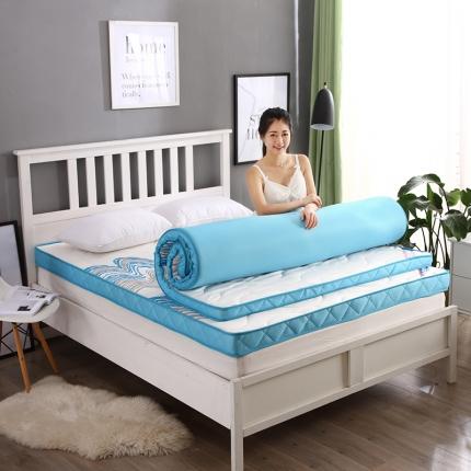 (总)迪乐妮垫业 活性印花针织记忆棉床垫