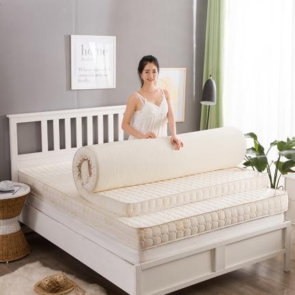 (总)迪乐妮垫业 不可拆洗记忆棉床垫3色