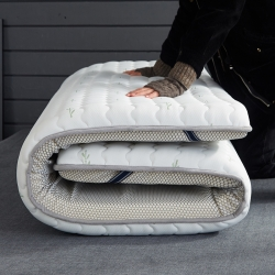 (总)迪乐妮 乳胶抗压纤维三明治透气床垫乳胶白色