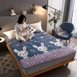 (總)眠勢力 2019新款保暖法萊絨印花床墊