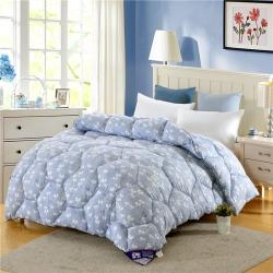 蓝迪丝羽丝绒冬被加厚保暖磨毛印花被子冲绒被芯 清晨之恋-蓝