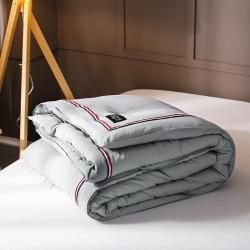 (总)立奥 新品水洗棉TB织带冬被 加厚保暖被芯被子