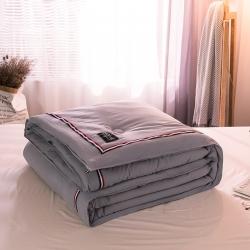 (总)立奥 新品水洗棉TB织带冬被 加厚保暖被芯被子 整张棉