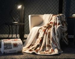 品乐家纺 双层加厚保暖毛毯双层爱心