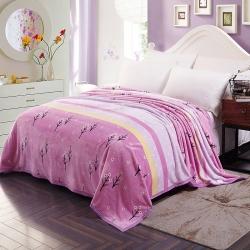 赋雅家纺 双面绒毯子超柔加厚云貂绒毛毯法莱绒毛毯 床单盖毯